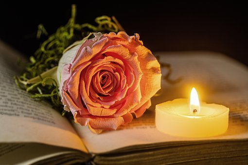 Rose, Candle, Book, Light, Candlelight, Shining, Burn