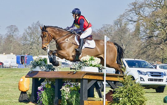 Jump, Obstacle, Competition, Equestrian
