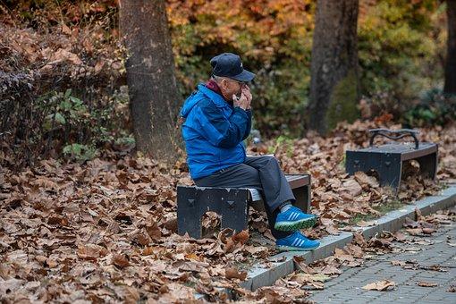 Harmonica, Old Man, Lonely, Autumn, Sadness, Life, Park