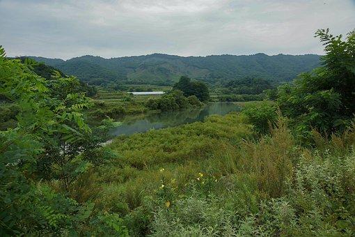 River, Green, Calm, Fishing, Nature