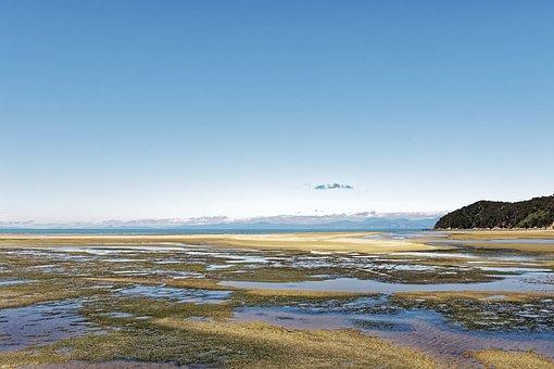 New Zealand, Sandy Bay, Bay, Tide, Ebb