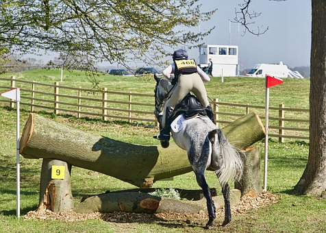 Jump, Equestrian, Competition, Obstacle, Rider, Sport
