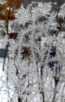 The Treble Clef, Frost, Leann, Cold, Glass, Freezing