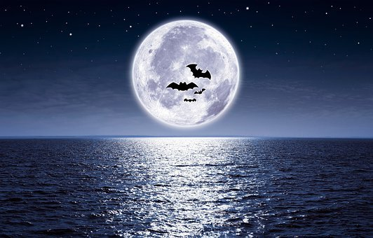 Moon, The Sea, Full Moon, Light Reflective, Moonlight