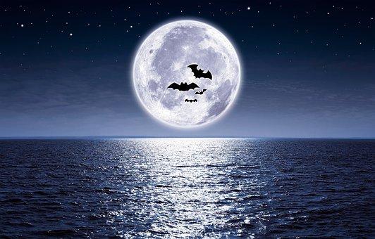 Moon, The Sea, Full Moon