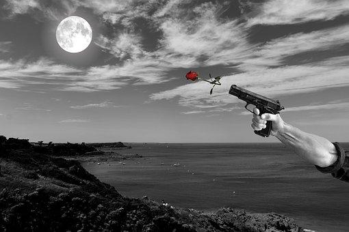 Gun, Rose, Love, Wallpaper, Business, Food, Nature
