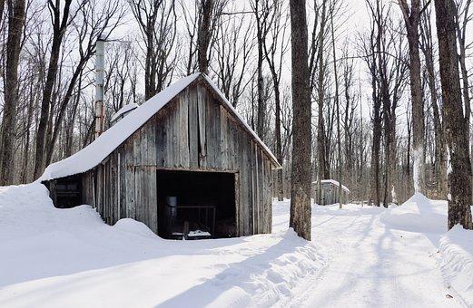 Cabin, Rustic, House, Wood, Chalet, Rural, Grange, Old