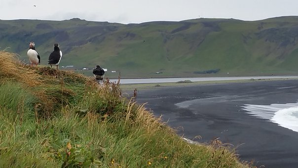 Iceland, Water, Landscape, Nature
