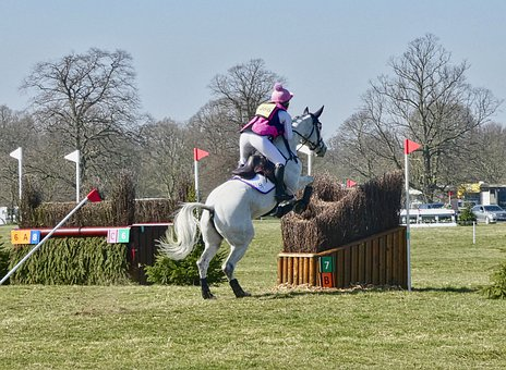 Equestrian, Jumping, Obstacle, Competition, Horse