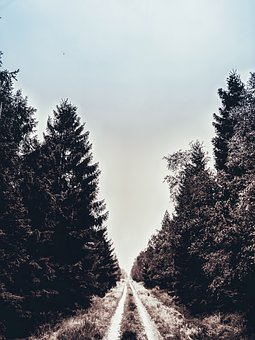 Nature, Sky, Landscape, Clouds, Tree