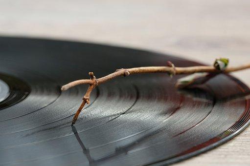 Record, Plate, Vinyl, Analog, Music
