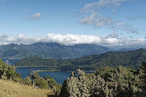 New Zealand, Fitzroy Bay, Bay, Sea