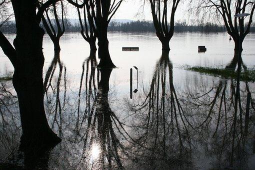 High Water, Rhine River, The Rhine Meadow Flooded