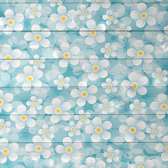 Wood Daisy Background, Wood And Flowers, Daisy, April
