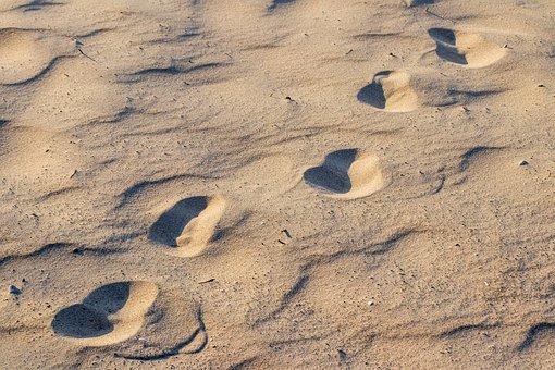 Traces, Sand, Landscape, Beach, Sand Beach, Footprints