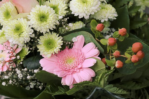 Bouquet Of Flowers, Gerbera, Pink, Bright, Bouquet