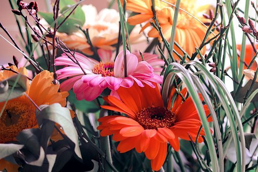 Bouquet Of Flowers, Gerbera, Red, Pink, Bright, Bouquet