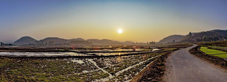 Country, Sun, Rice, Road, Scene, Silk