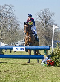 Obstacle, Jump, Horse, Competition, Equestrian, Sport
