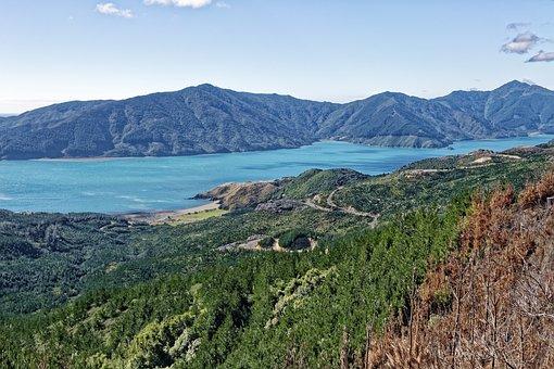 New Zealand, Okiwi Bay, Bay, Sea, Water