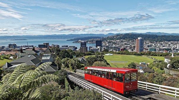 New Zealand, Wellington, Capital, City, Houses