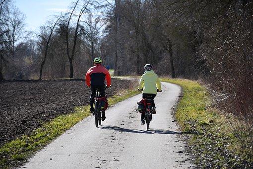 Bike, Cycling, Away, Trees, Winter, Autumn