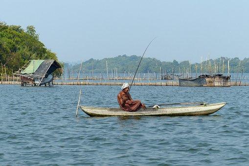 Fisherman, Lake, Fishing, Nature, Mood