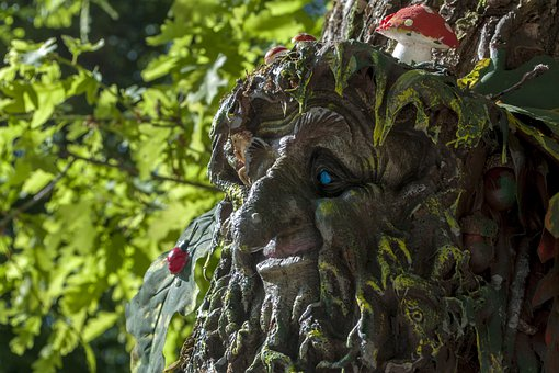 Wood, Troll, Old, Summer, Natural, Trees