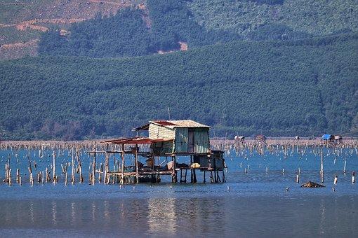 Vietnam, Hoi An, Oysters, Oyster Farming, Piles, Hut