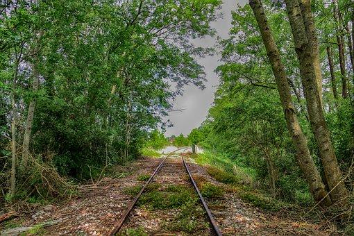 Rail, Train, Chemin-de-fer, Allee, Green, Direction