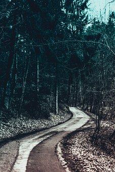 Road, Nature, Landscape, Field, Trees