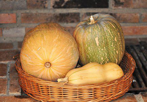 Still Life, Pumpkins, Harvest, Autumn, Basket