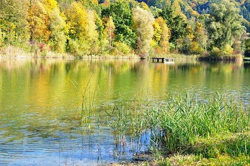 Autumn Mood, Farbenpracht, Lake, Quiet Autumn Picture