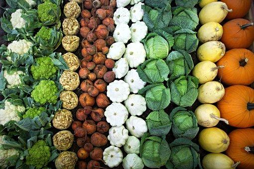 Vegetables, Cauliflower, Cabbage, Pumpkin, Celery