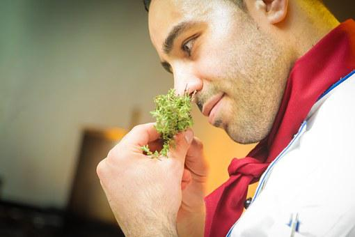 Chef, Smell, Cook, Spice, Restaurant, Italians, Berlin