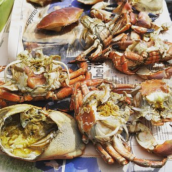 Crab, Crab Shells, Seafood, Crustacean, Claw, Shell