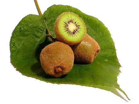 Kiwi, Fruit, Vitamins, Healthy, Green, Food, Cut, Fresh