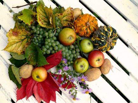 Fruits, Harvest, Autumn, Thanksgiving, Grapes, Apple