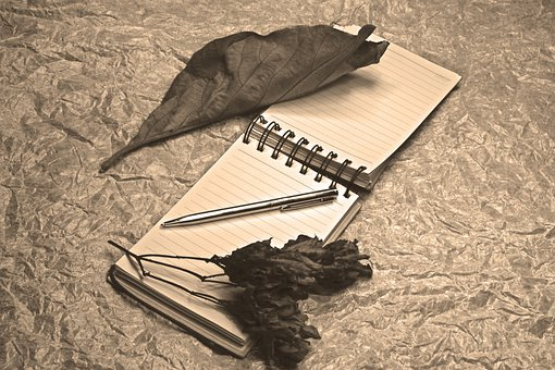 Notepad, Dried Leaves, Fine Art, Light Painting, Pen