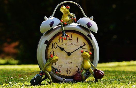Frogs, Time To Go, Farewell, Luggage, New Beginning