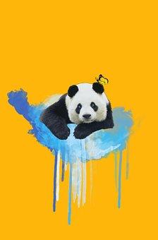 Panda, Paint, Butterfly, Yellow, Photoshop, Cloud