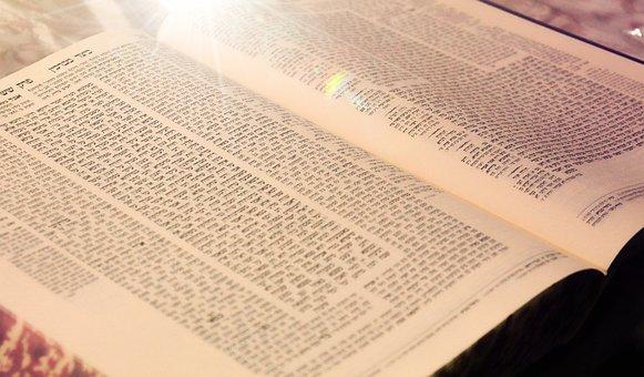 Torah, Book, Jewish, Religious