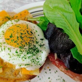 Egg, Bagel, Breakfast, Greens, Fresh, Healthy