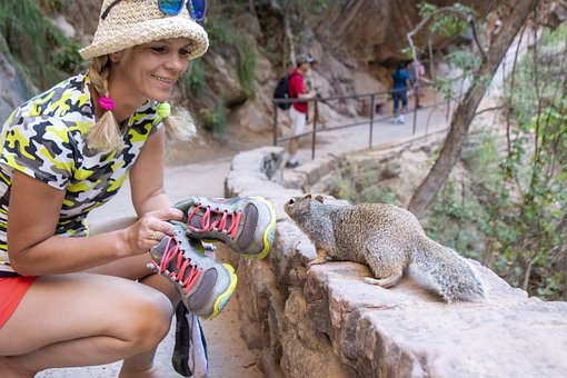 Zion, Squirrel, Woman, Nature