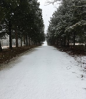 Country, Road, Snow, Trees