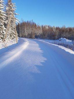 Sun, Snowdrift, Snow, Frost, Nature
