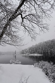 Landscape, Nature, Snow, Water, Winter