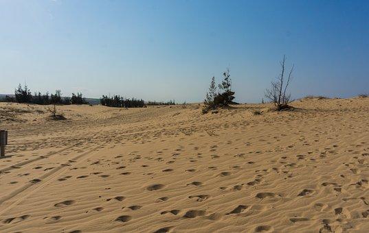 Dunes, White Sand, Tour, Tourism, Tourist, Asia