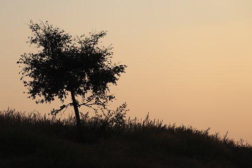 Exposure, Shadow, Sunset, Sky, Mood, Light, Stress