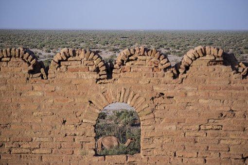 Kavir National Park, Mostafa Meraji